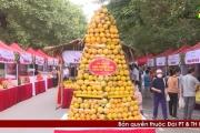 UBND tỉnh Hưng Yên: Tổ chức phiên chợ Cam ở Ecopark