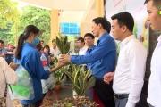 Ngày hội thanh niên hưởng ứng các hoạt động bảo vệ môi trường, ứng phó biến đổi khí hậu