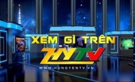 Xem gì trên HYTV 1/8 - 7/8/2020