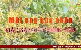 Đất và người Hưng Yên: Mật ong hoa nhãn - Đặc sản đất Hưng Yên