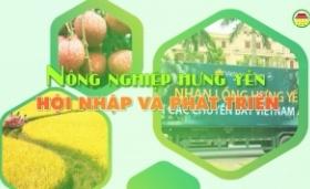 Nhìn lại sự đổi thay của nông thôn Hưng Yên sau 10 năm xây dựng nông thôn mới