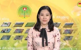 Tạp chí sức khỏe và đời sống số 262 ngày 24/07/2017